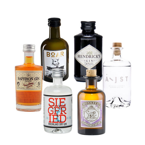 Gin Mini Tasting Set Vol. I - 6 mal original Gin minis