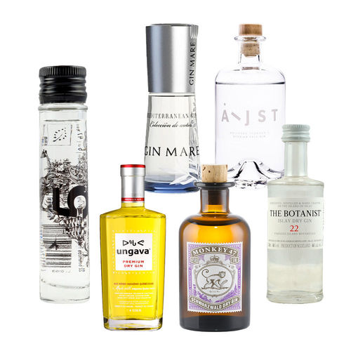 Gin Mini Tasting Set Vol. III - 6 mal original Gin minis